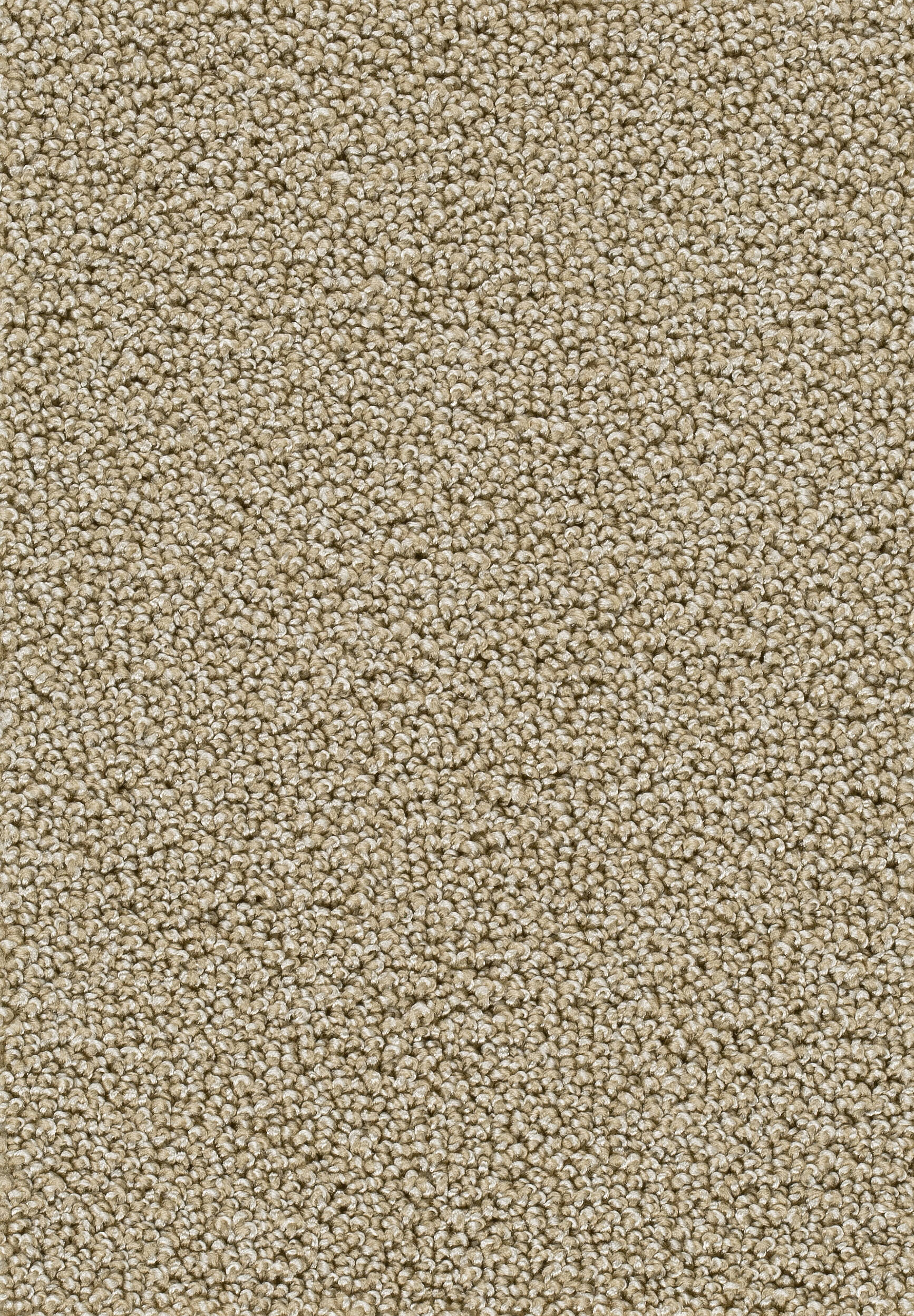 Teppichboden AMBRA 34 400cm breit