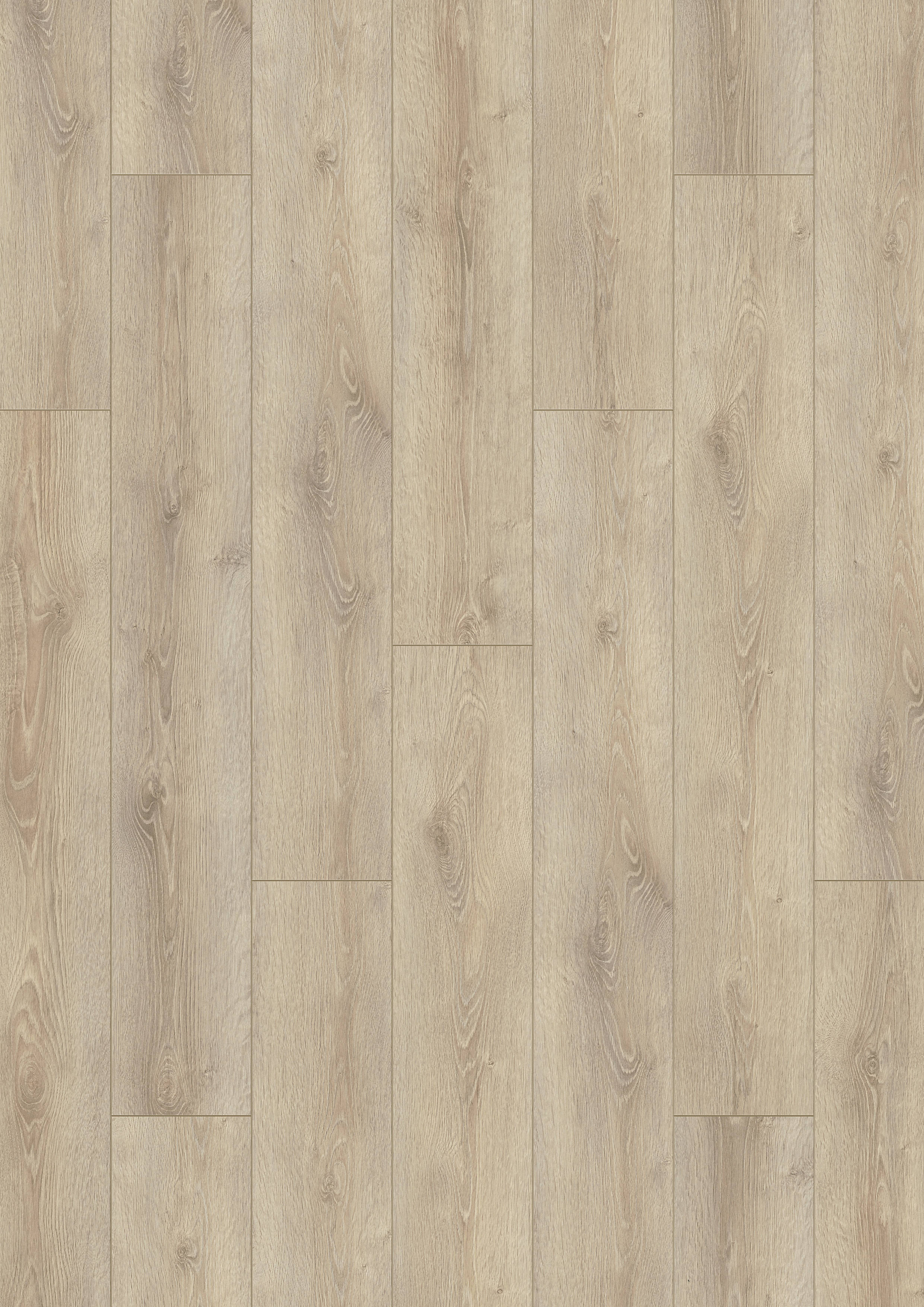 8557 Oak sand V4