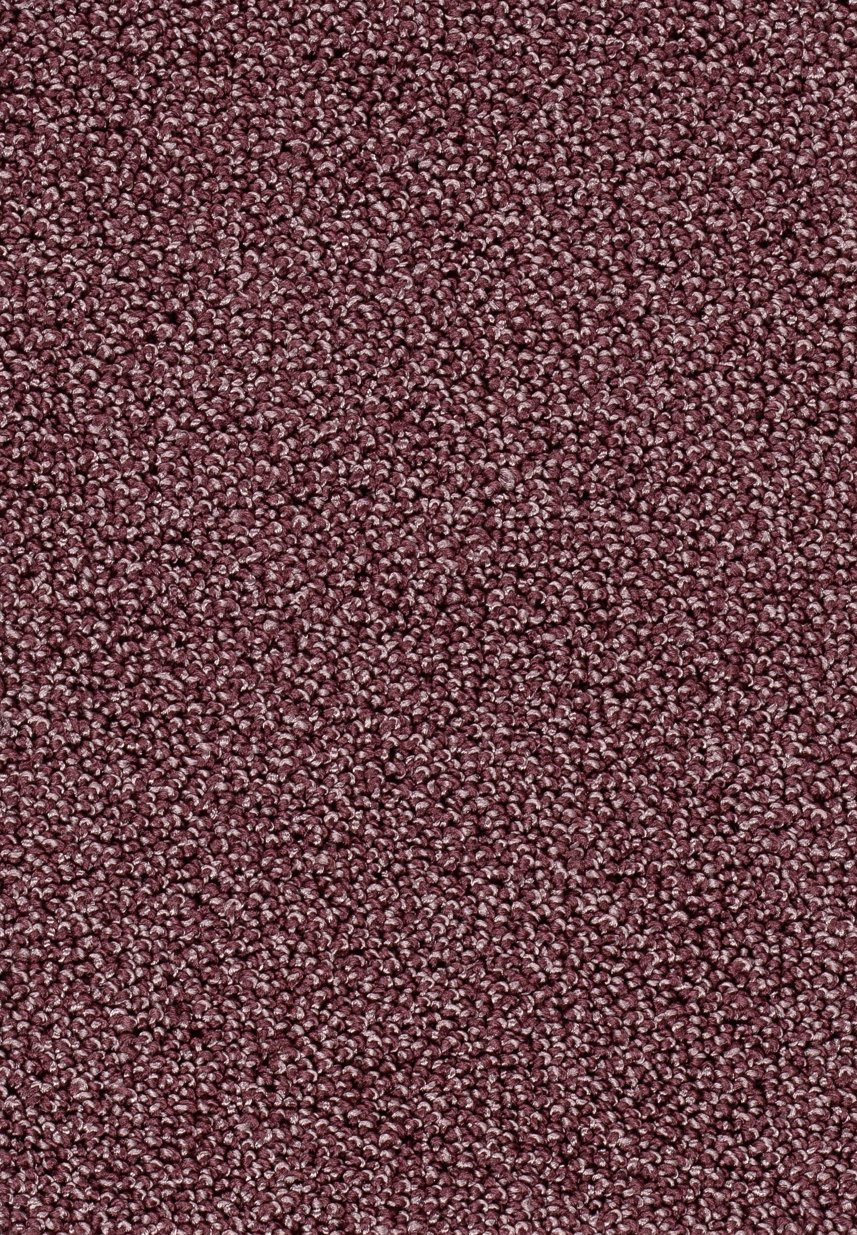 Teppichboden AMBRA 66 400cm breit